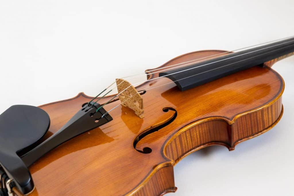 Meisterinstrument Neubau Marius Laufer